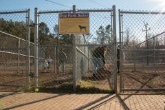Gold Park Dog Park